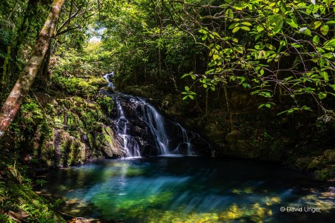 David-Unger-Mayflower Waterfall_20957508328_o